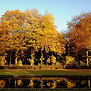 Fall Colors : A walk through the Benrather Schlosspark during Fall. A great opportunity to test the iPhone 4S' amazing camera in very challenging lighting conditions.